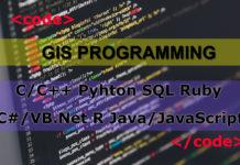 GIS Programming Skills