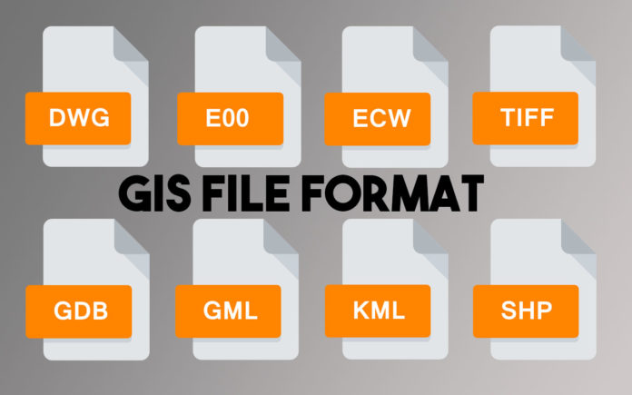 List of Common GIS File Format